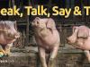 Speak, Talk, Say e Tell, qual a diferença?