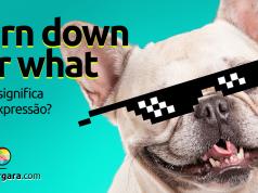 Turn Down for What | O que significa esta expressão?
