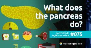 Aprendendo Inglês Com Vídeos #75: What Does The Pancreas Do?