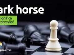 Dark Horse | O que significa esta expressão