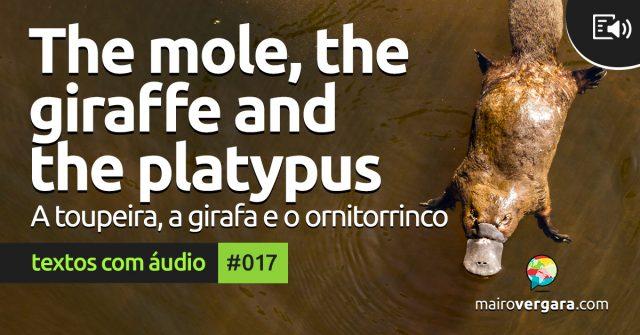 Textos Com Áudio #017   The mole, the giraffe and the platypus