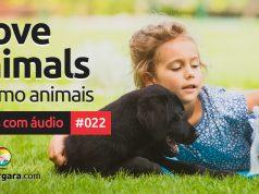 Textos Com Áudio #022 | I love animals